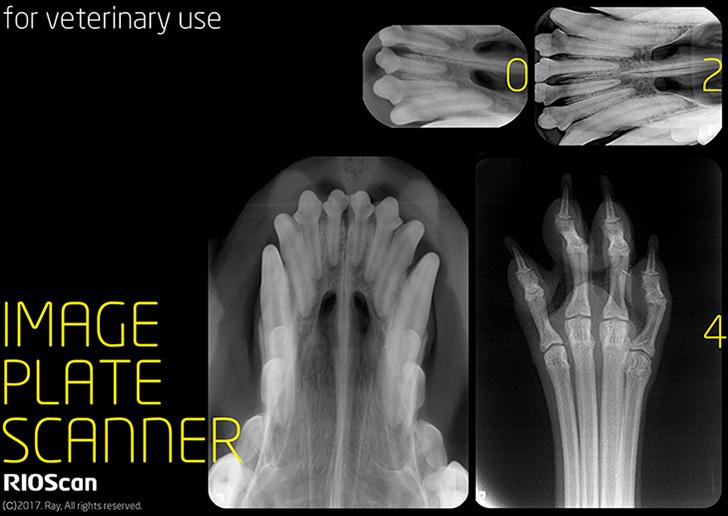 Image Plate Scanner